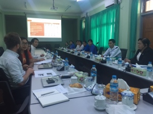 Presentation of enterprise survey preliminary results to MoLES' representatives