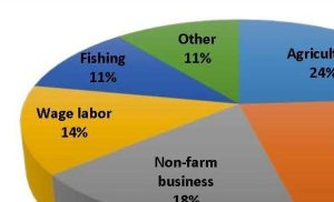 The main sources of rural household income in Mon, in order of importance, are agriculture (24%), remittances (22%), non-farm business (18%), wage labor (14%), and fishing (11%)